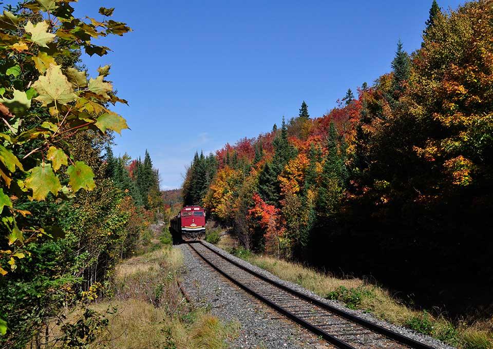 Agawa Canyon Train Tour Algoma Country