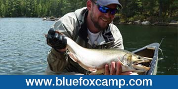 blue-fox-camp-ad-photo4