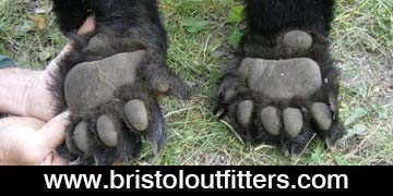 bristol-off-road-outfiiters-web-ad3