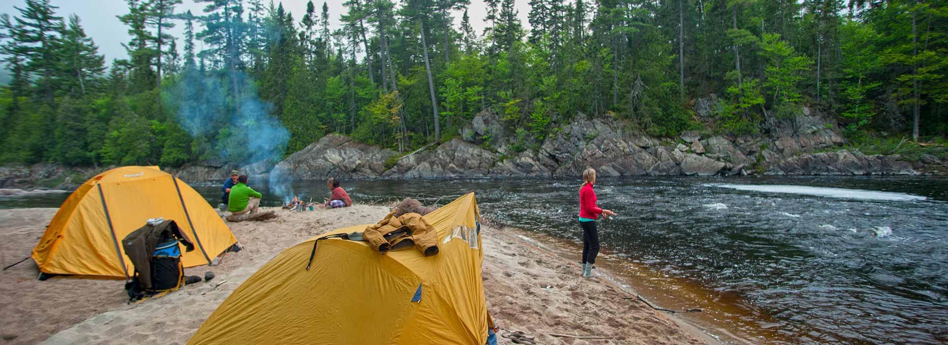 camp-wildlife-header