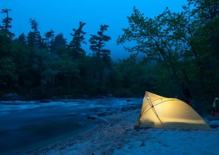 camp-wildlife-photo7
