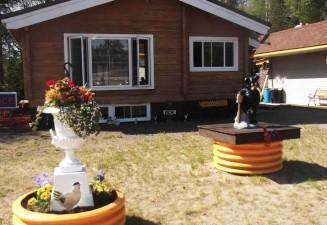 chicken-shack-motel-photo5