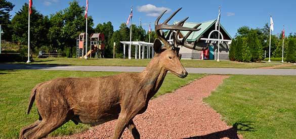 deer-trail-drive