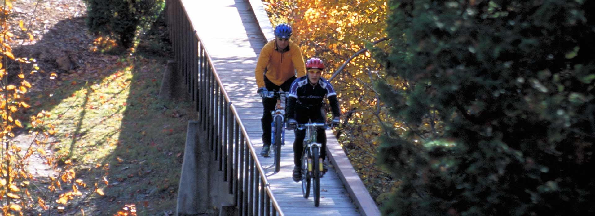 mountain-bike-cycle-header