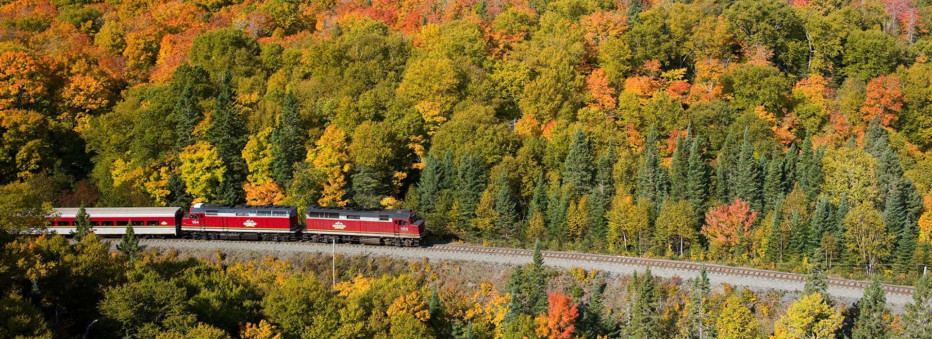 rail-excursions-header