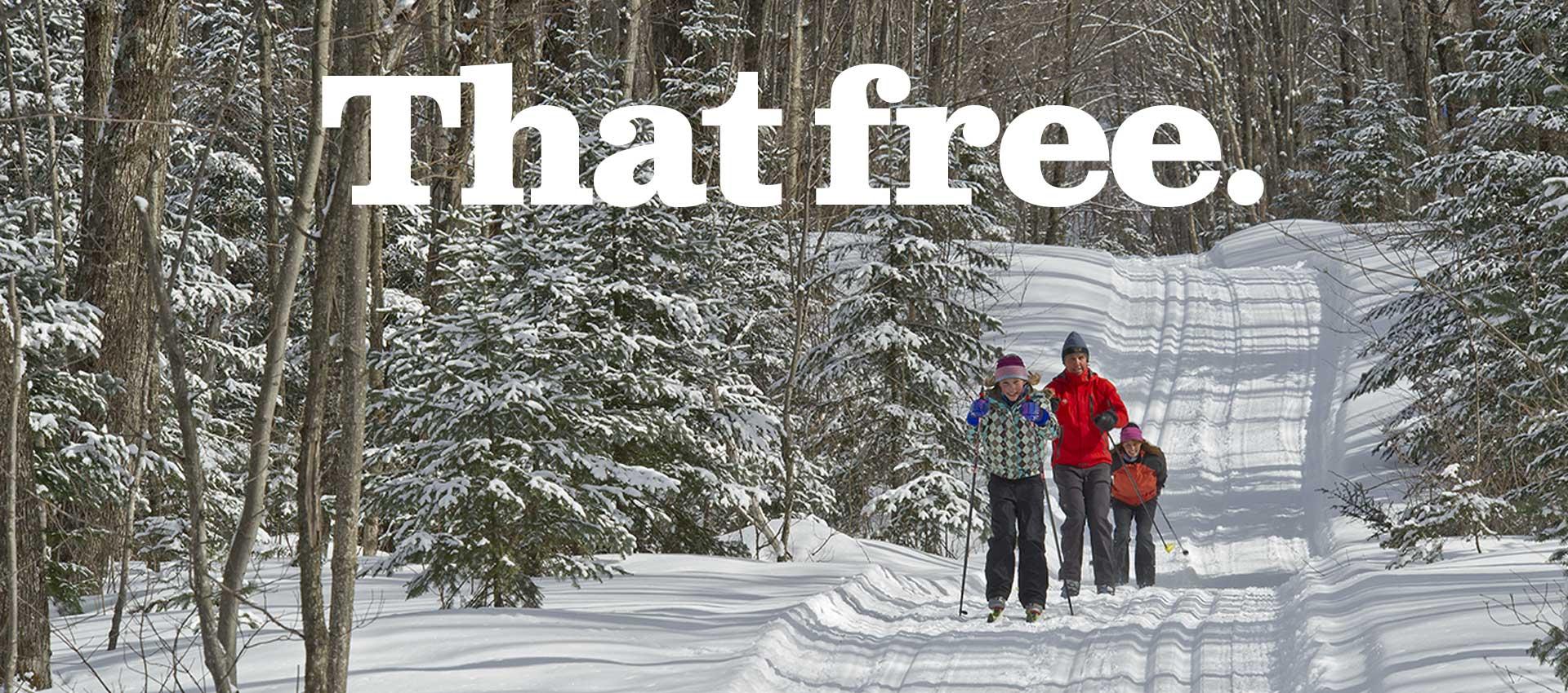 winter-cross-country-skiing-algoma