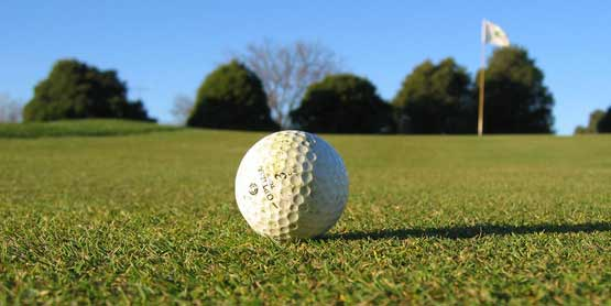 golf ball on green