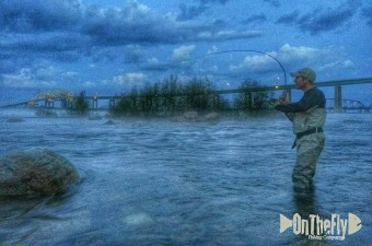 on-the-fly-fishing1