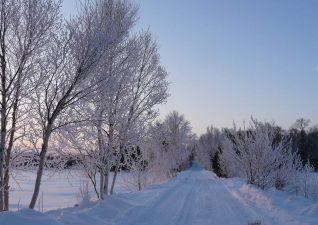 winter-causeway-002