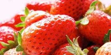 strawberrytea_image
