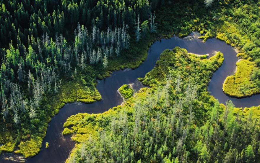 wildernesnorth_aerialriver