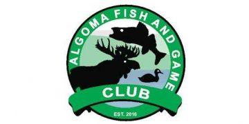algomafishgame_logo