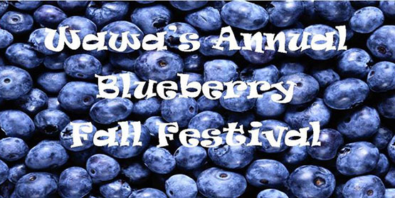 WawaBlueberryFest.Event