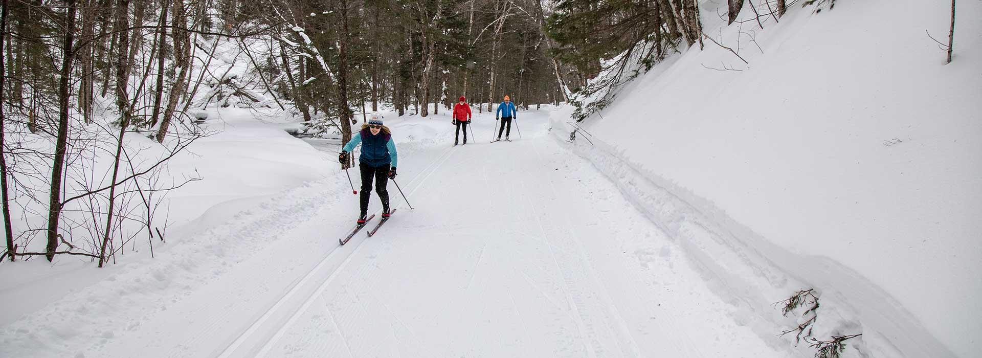 ski-snowshoe-image