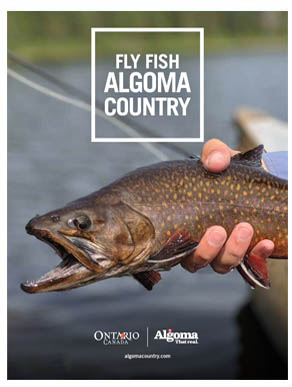 Fly-Fish-Algoma-Country