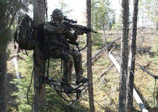 bear-hunting-photo-8