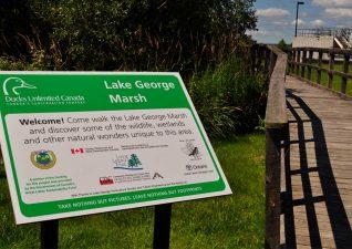echo-bay-lakegeorge-trail-signage