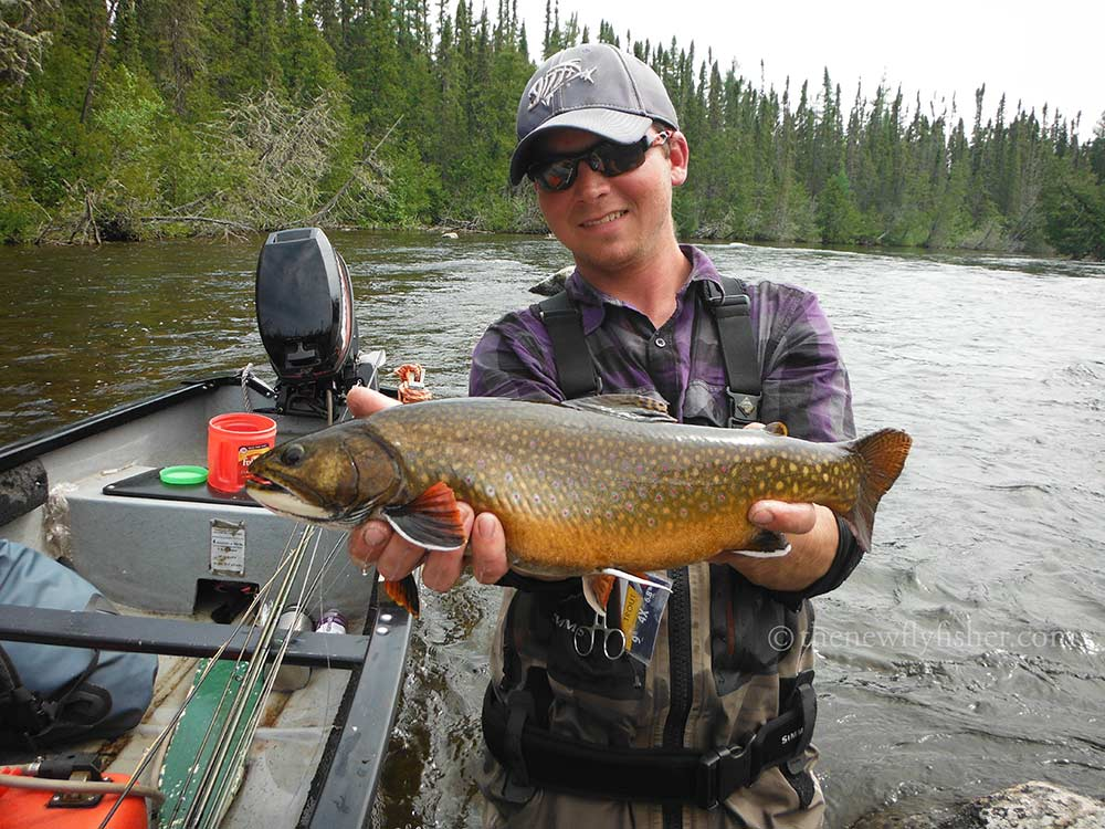 brook-trout-fishing-img6